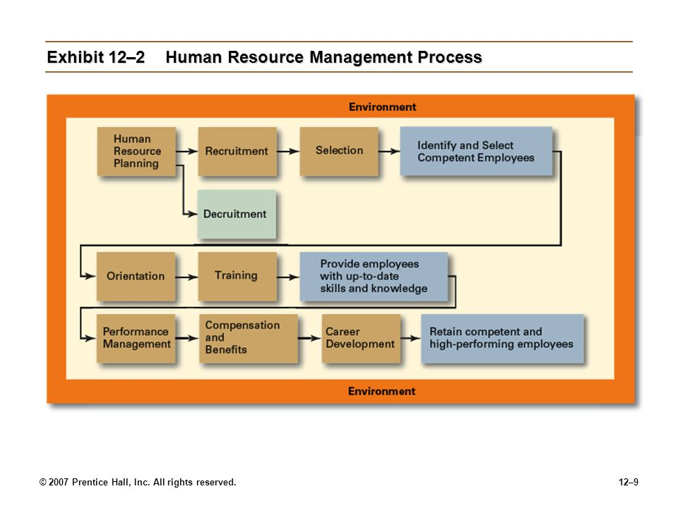 Exhibit 12–2 Human Resource Management Process