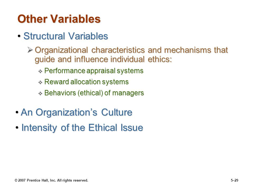 Other Variables Structural Variables An Organization's Culture
