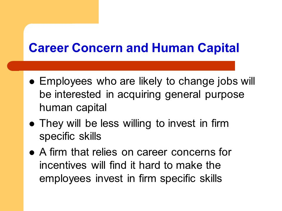 Career Concern and Human Capital