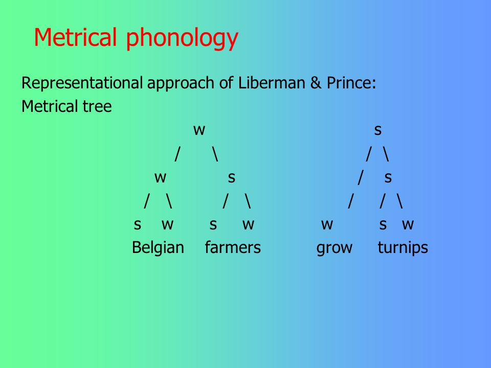 Metrical phonology Representational approach of Liberman & Prince: