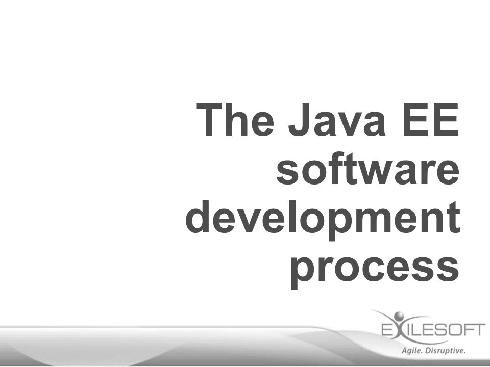 The Java EE software development process