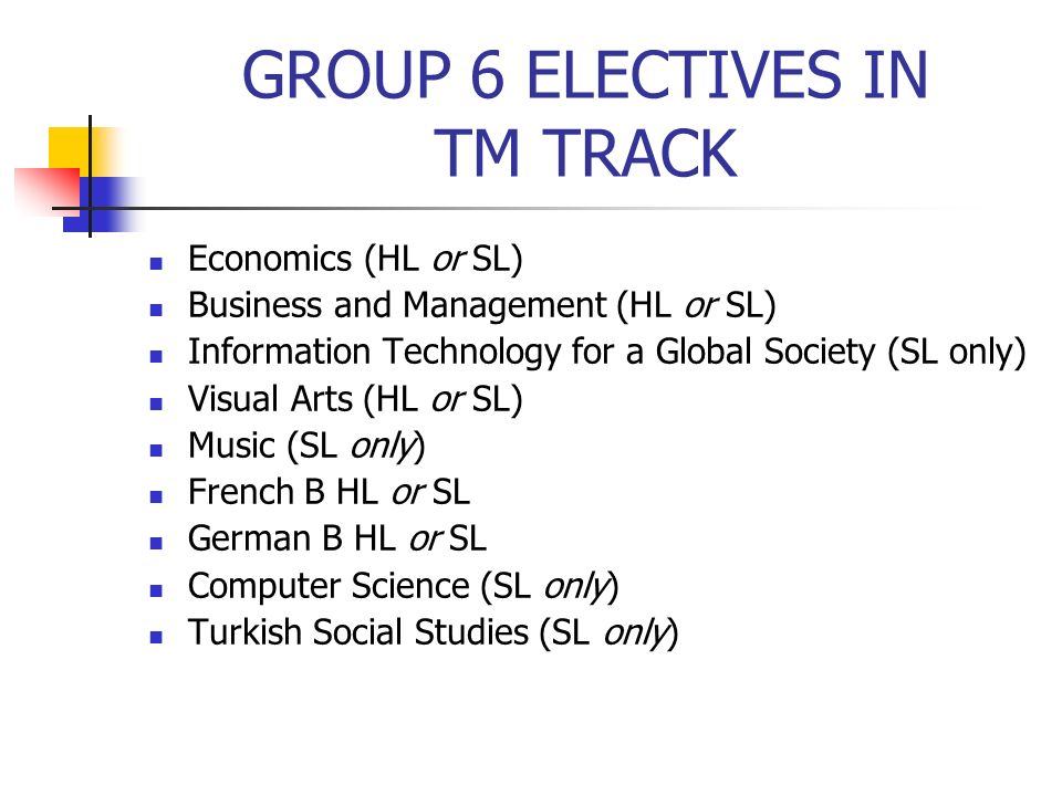 GROUP 6 ELECTIVES IN TM TRACK