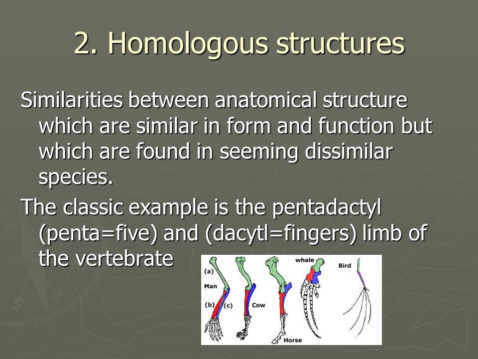 2. Homologous structures