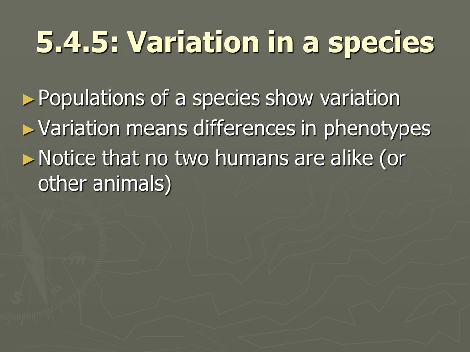 5.4.5: Variation in a species