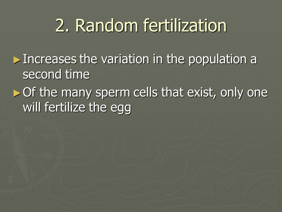 2. Random fertilization Increases the variation in the population a second time.