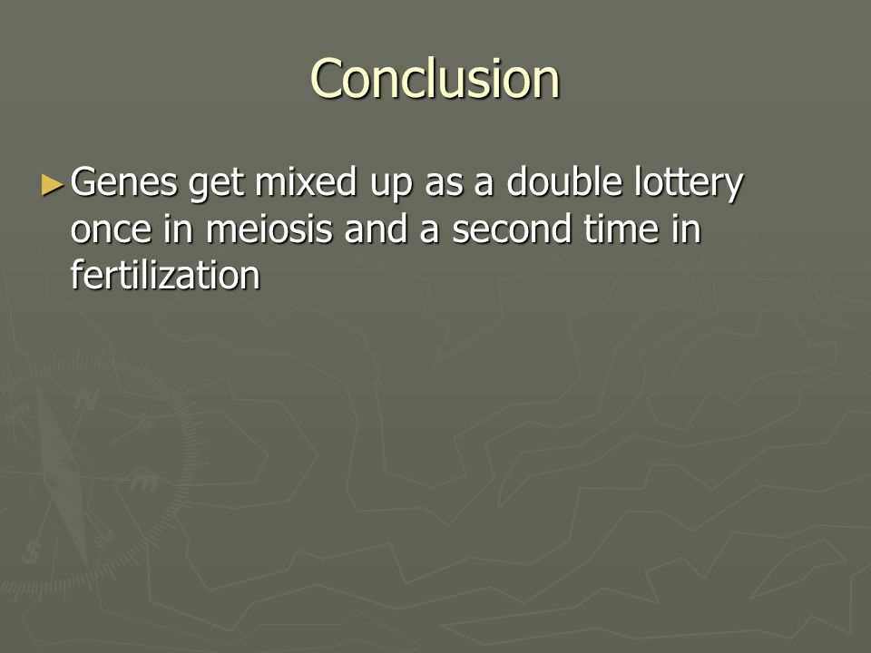 Conclusion Genes get mixed up as a double lottery once in meiosis and a second time in fertilization.
