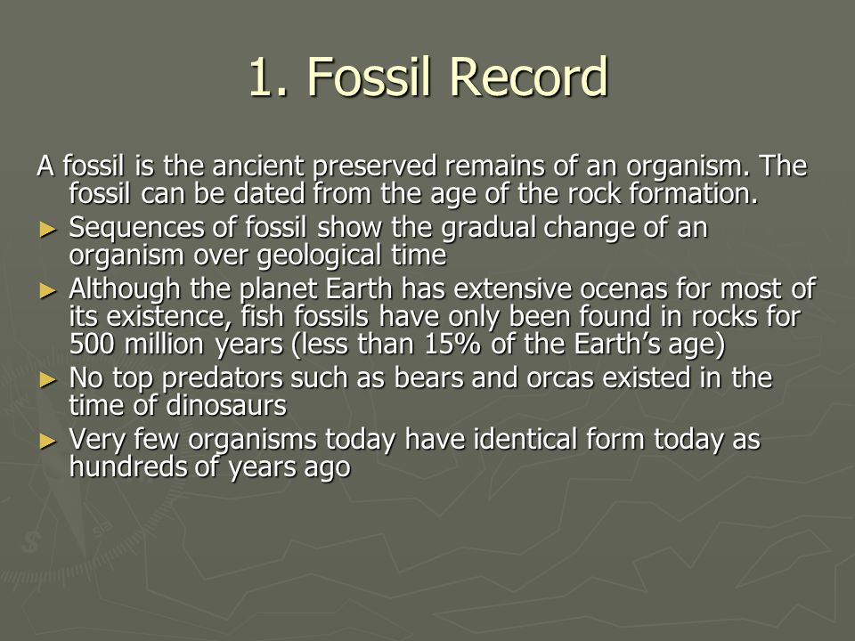 1. Fossil Record A fossil is the ancient preserved remains of an organism. The fossil can be dated from the age of the rock formation.