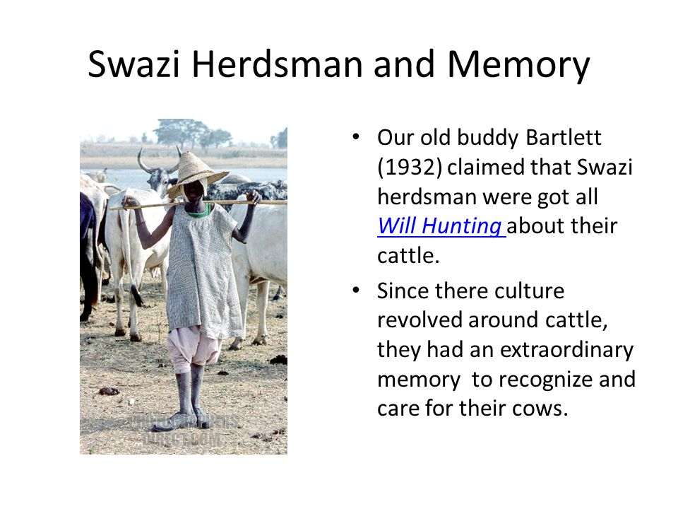 Swazi Herdsman and Memory