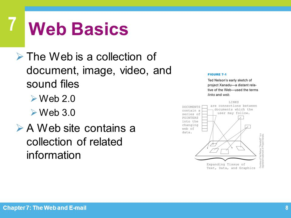 Web Basics The Web is a collection of document, image, video, and sound files. Web 2.0. Web 3.0.
