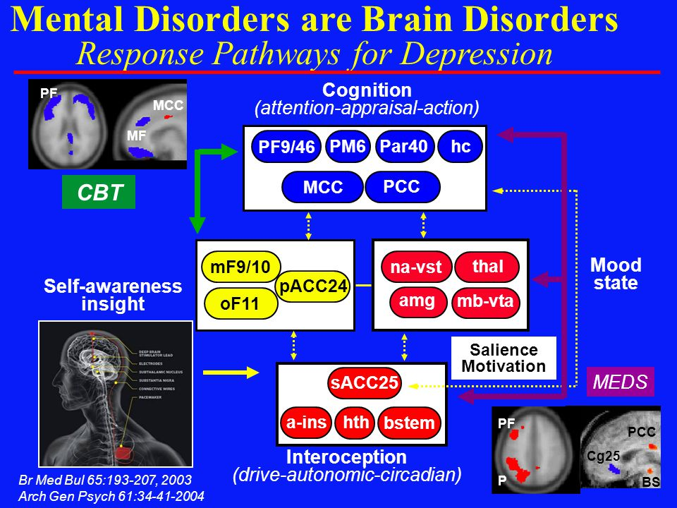 Mental Disorders are Brain Disorders