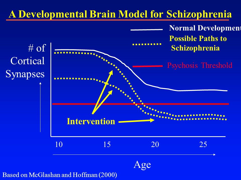 A Developmental Brain Model for Schizophrenia