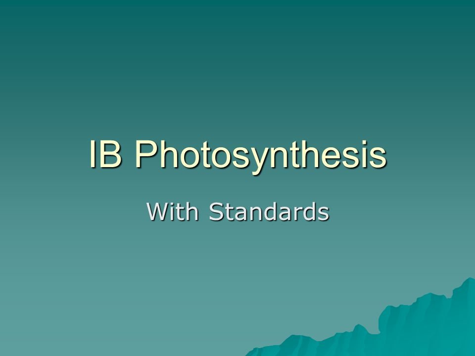 IB Photosynthesis With Standards