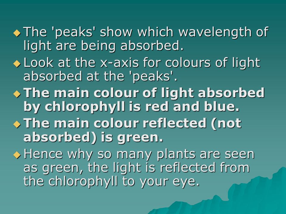 The peaks show which wavelength of light are being absorbed.