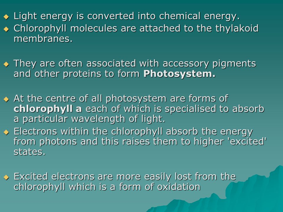 Light energy is converted into chemical energy.