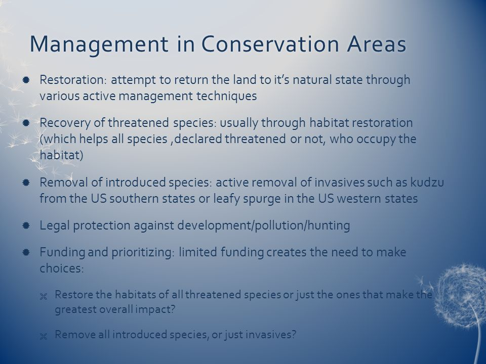 Management in Conservation Areas