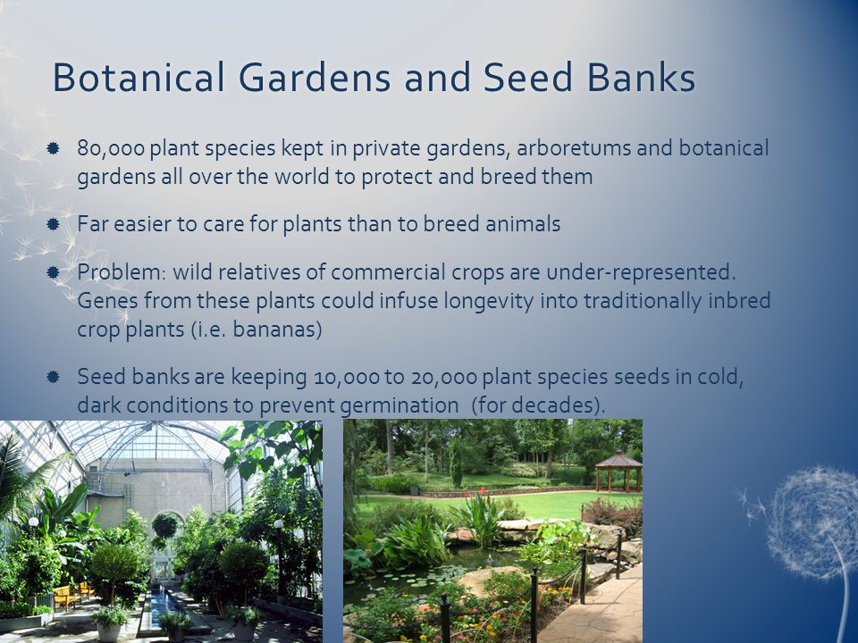 Botanical Gardens and Seed Banks