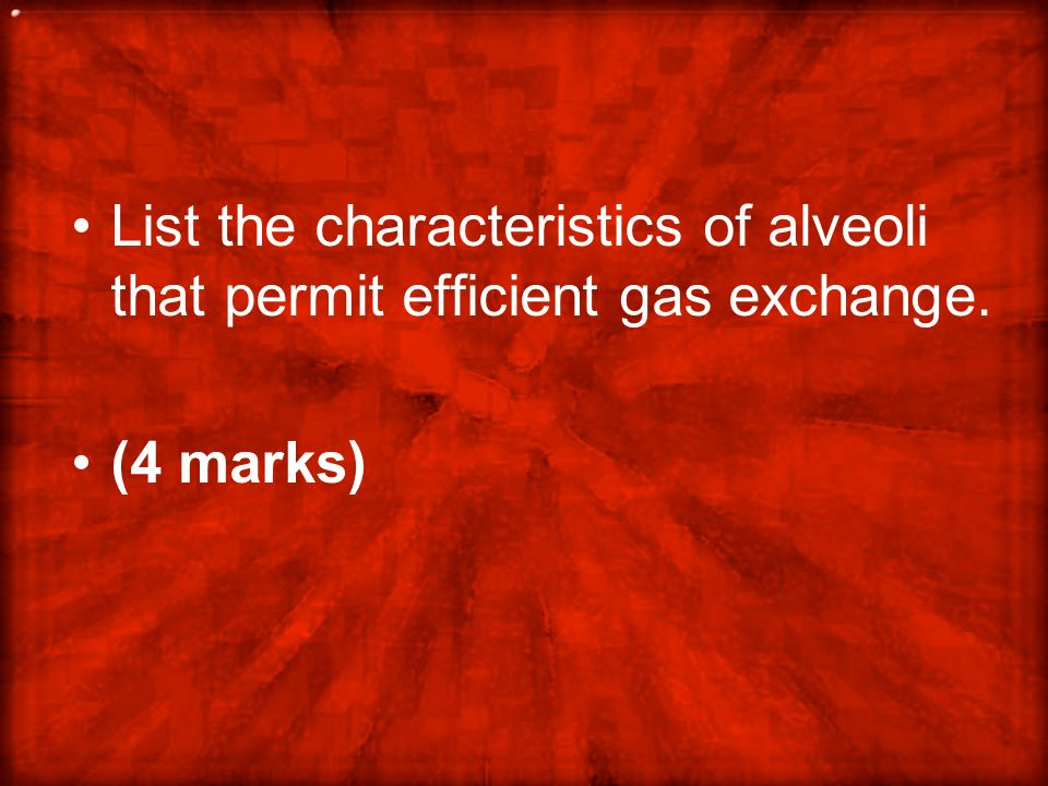 List the characteristics of alveoli that permit efficient gas exchange.