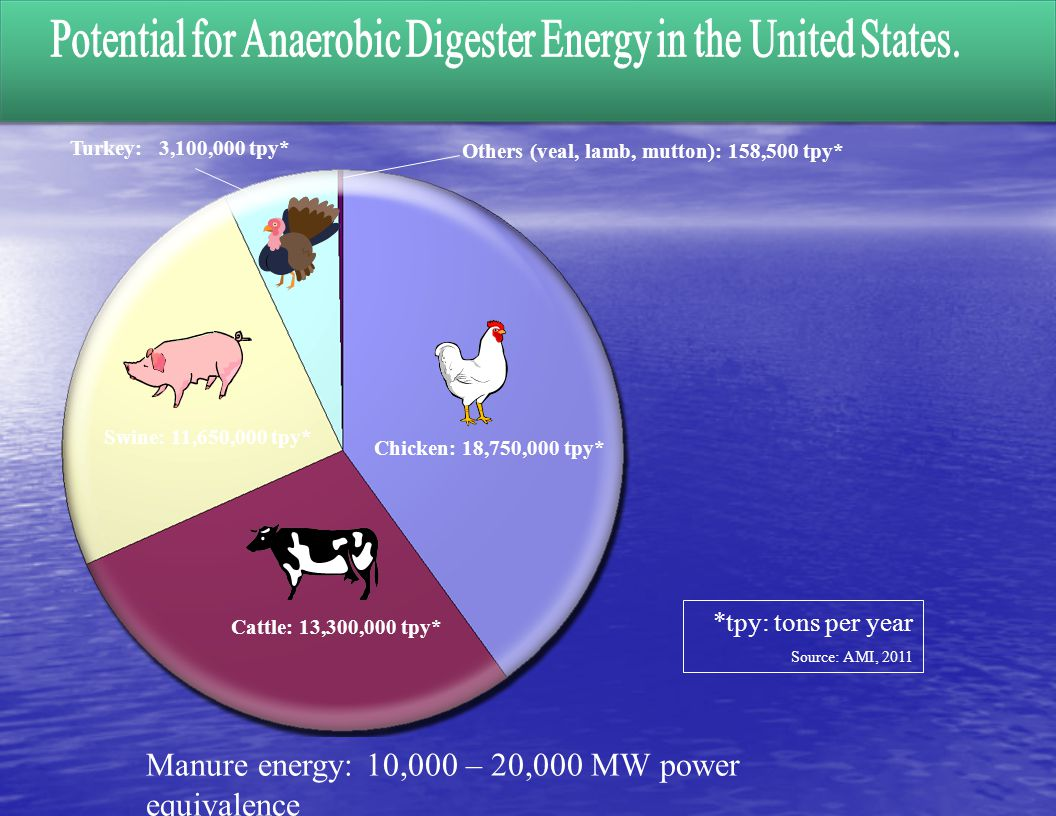 Potential for Anaerobic Digester Energy in the United States.