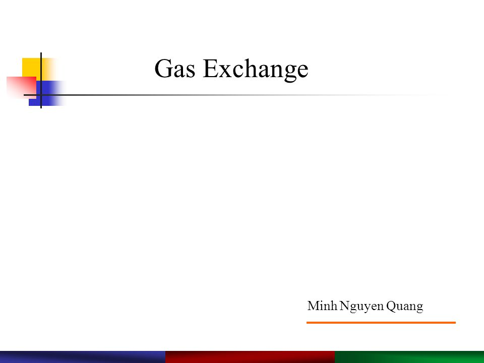 Gas Exchange Minh Nguyen Quang