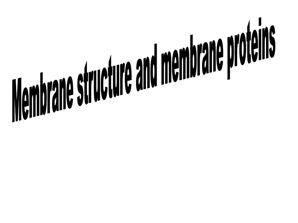 Membrane structure and membrane proteins