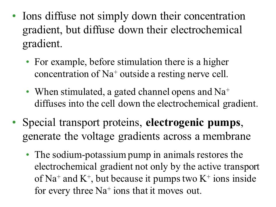 Ions diffuse not simply down their concentration gradient, but diffuse down their electrochemical gradient.