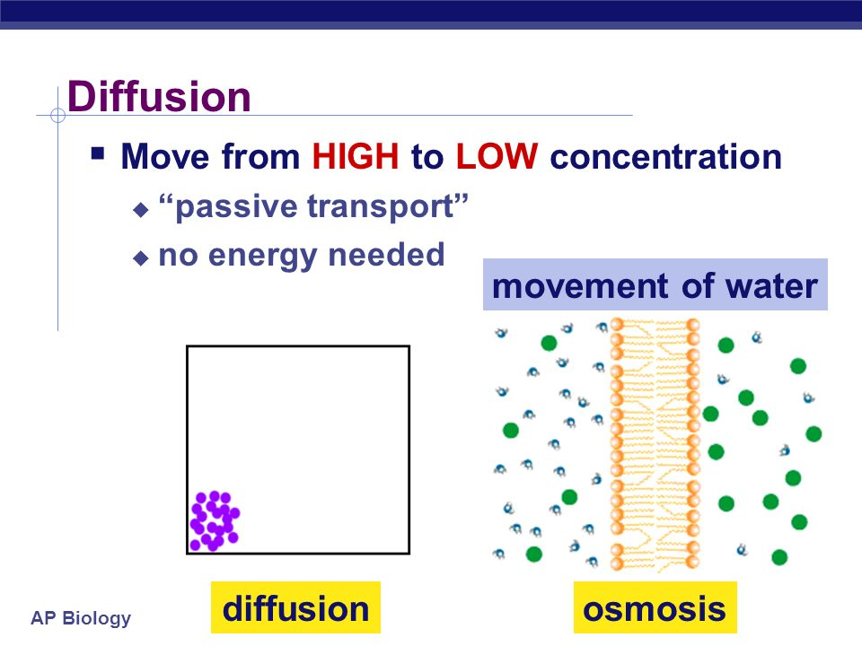 Diffusion Move from HIGH to LOW concentration movement of water