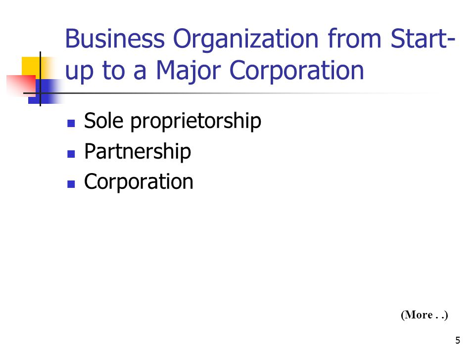 Business Organization from Start-up to a Major Corporation