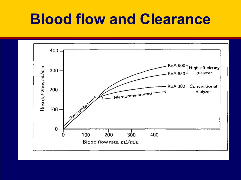 Blood flow and Clearance