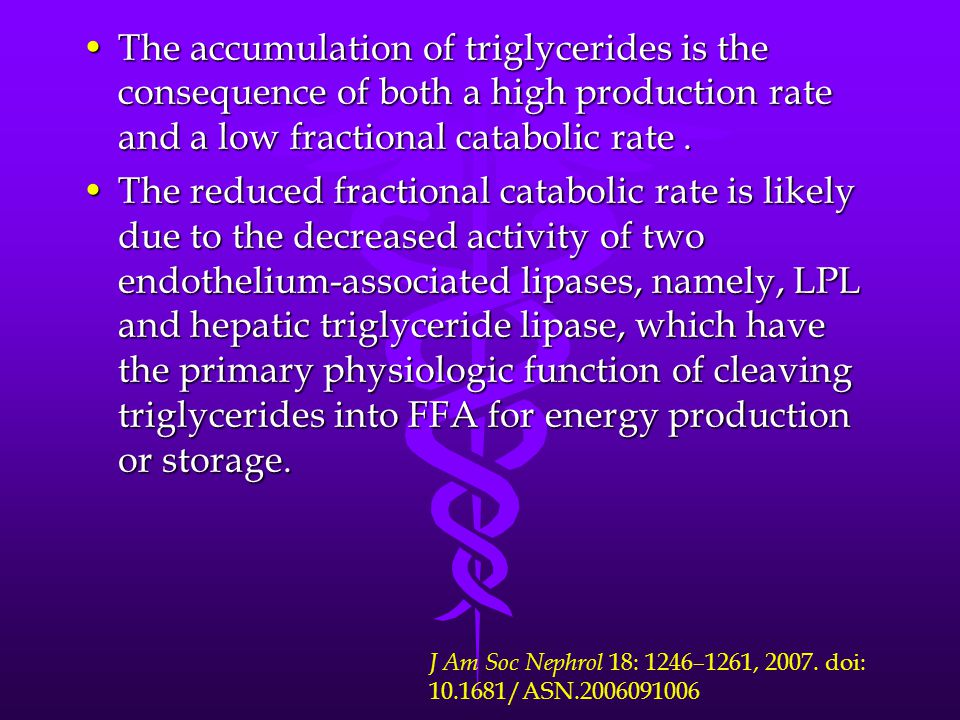 The accumulation of triglycerides is the consequence of both a high production rate and a low fractional catabolic rate .