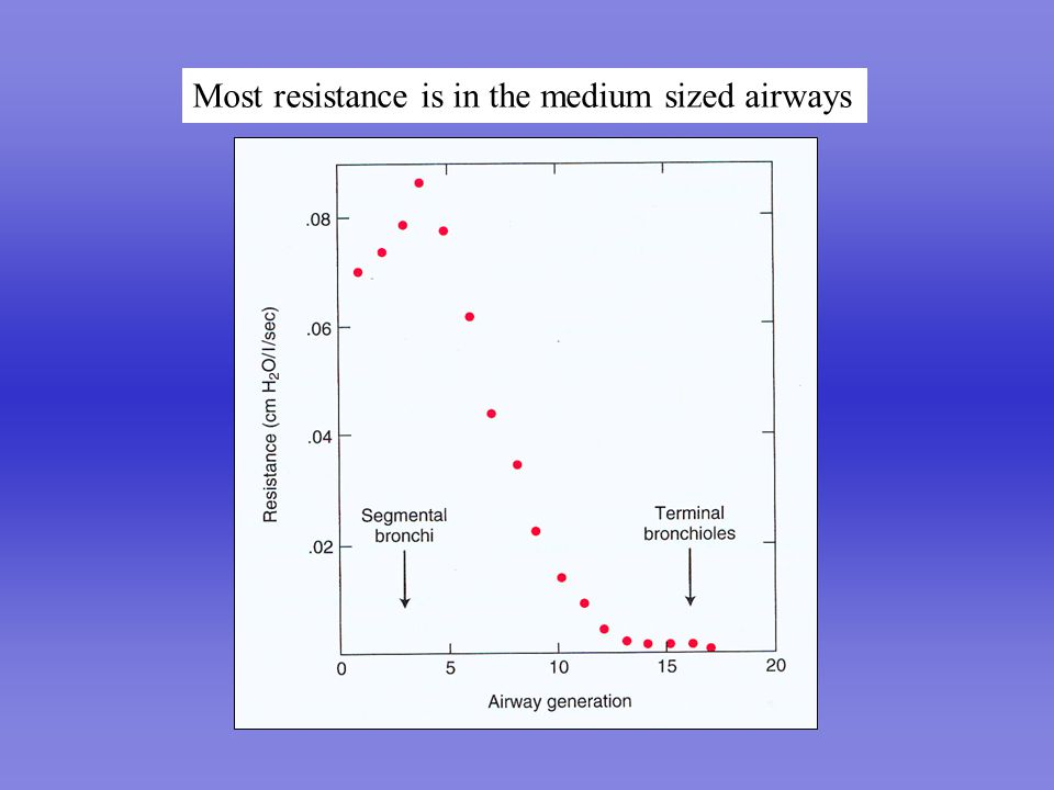 Most resistance is in the medium sized airways