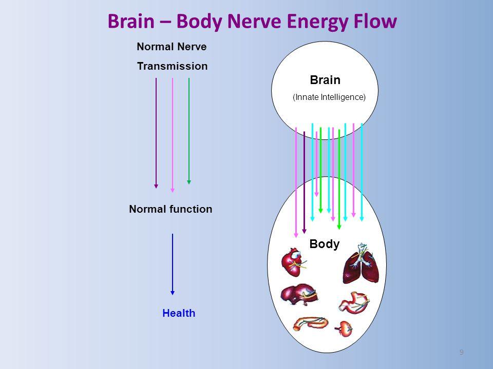 Brain – Body Nerve Energy Flow