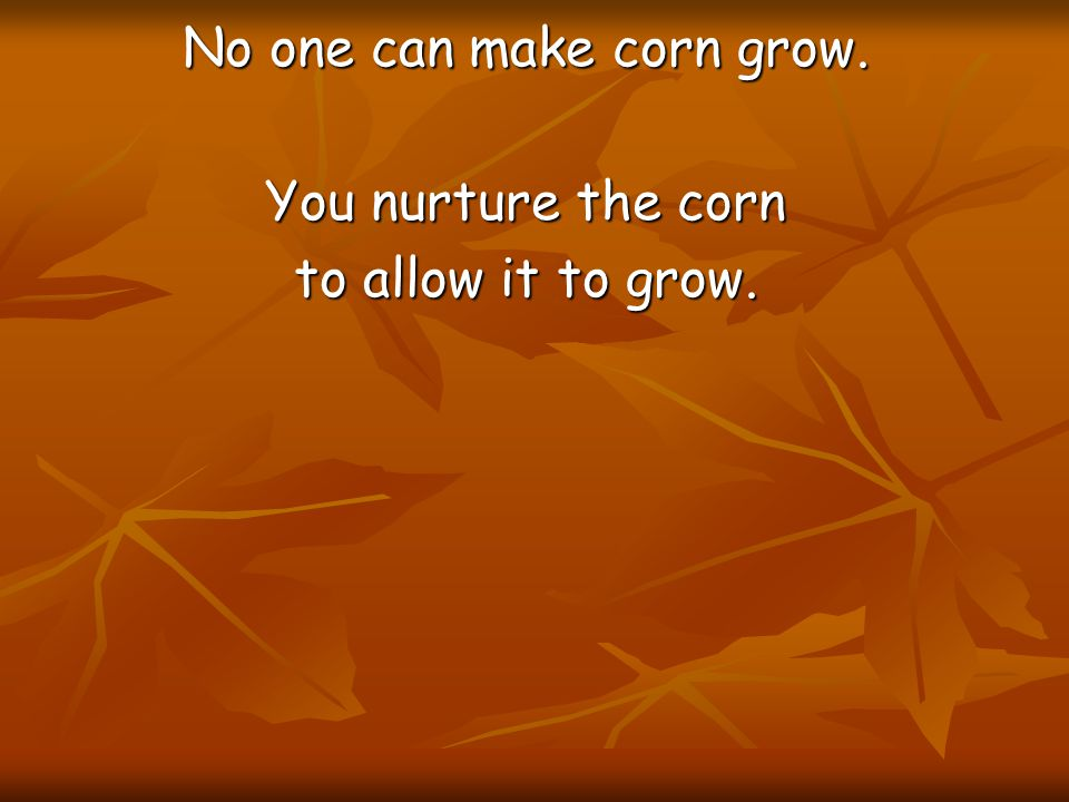 No one can make corn grow.