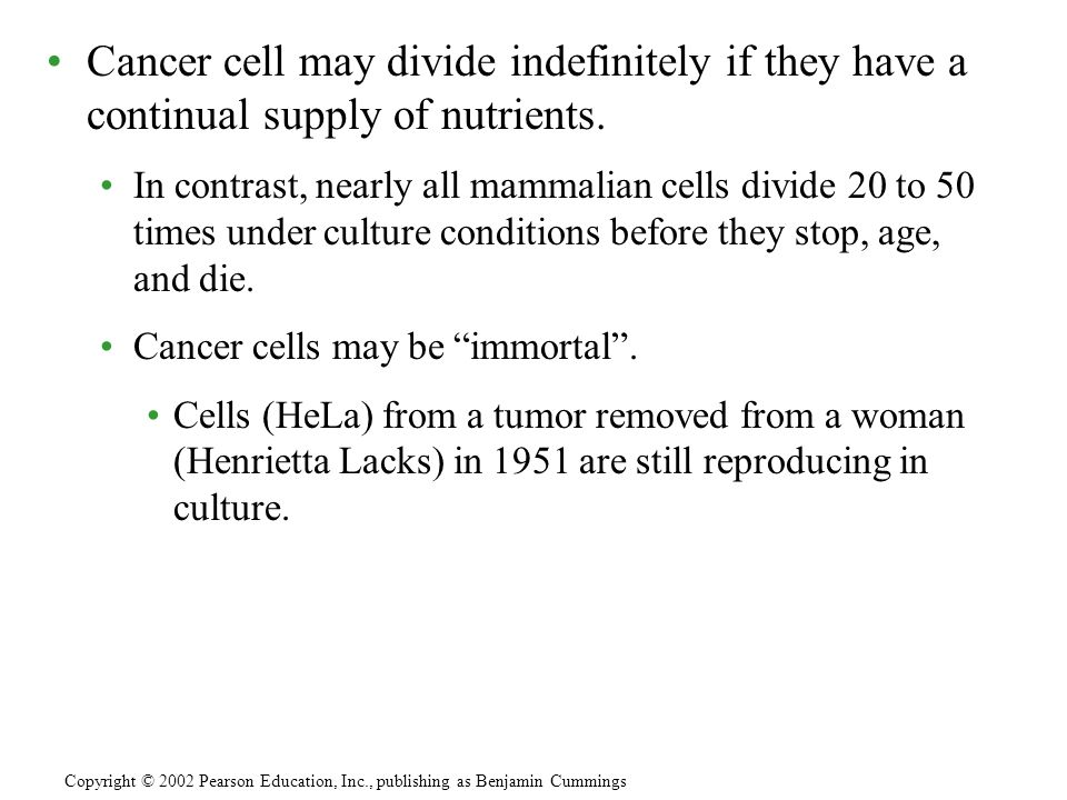 Cancer cell may divide indefinitely if they have a continual supply of nutrients.