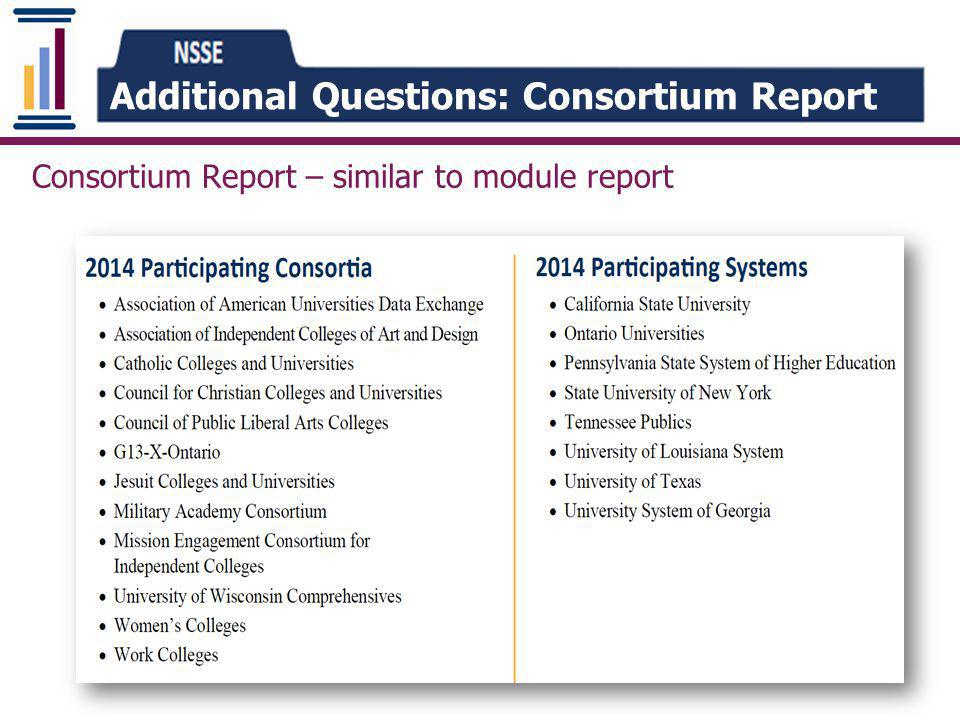 Additional Questions: Consortium Report