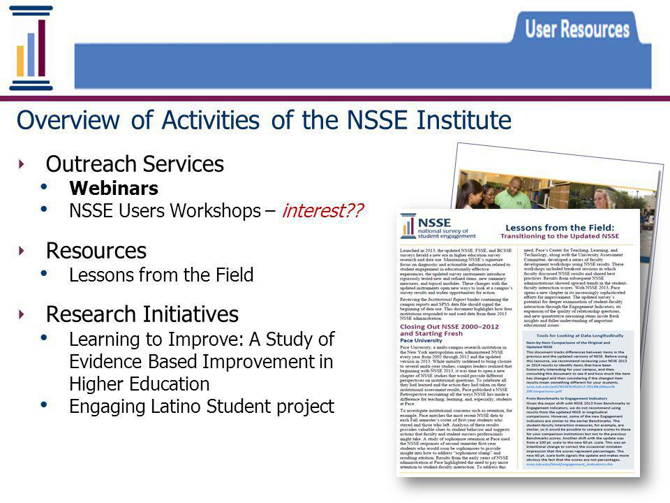 Overview of Activities of the NSSE Institute