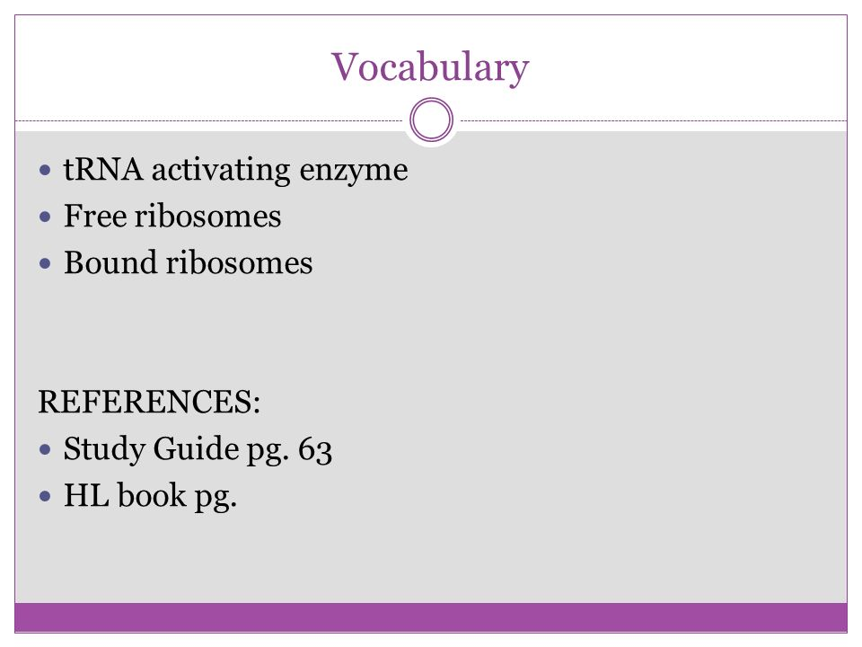 Vocabulary tRNA activating enzyme Free ribosomes Bound ribosomes