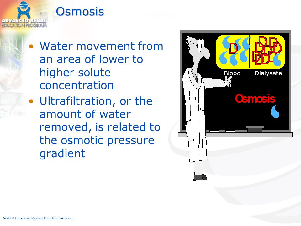 Osmosis Blood Dialysate. Water movement from an area of lower to higher solute concentration.