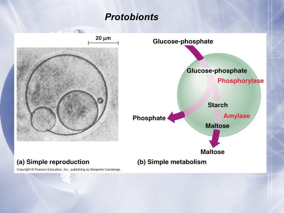 Protobionts