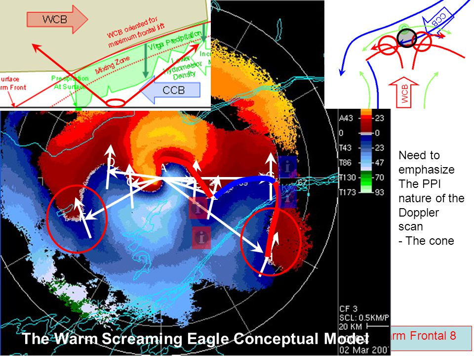 The Warm Screaming Eagle Conceptual Model