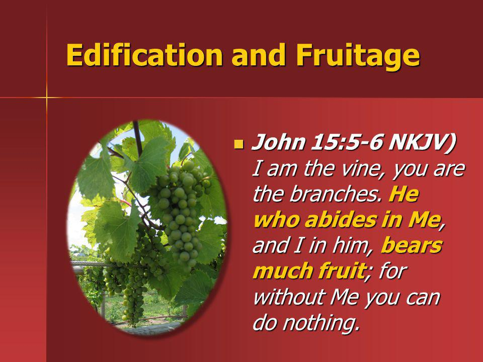 Edification and Fruitage