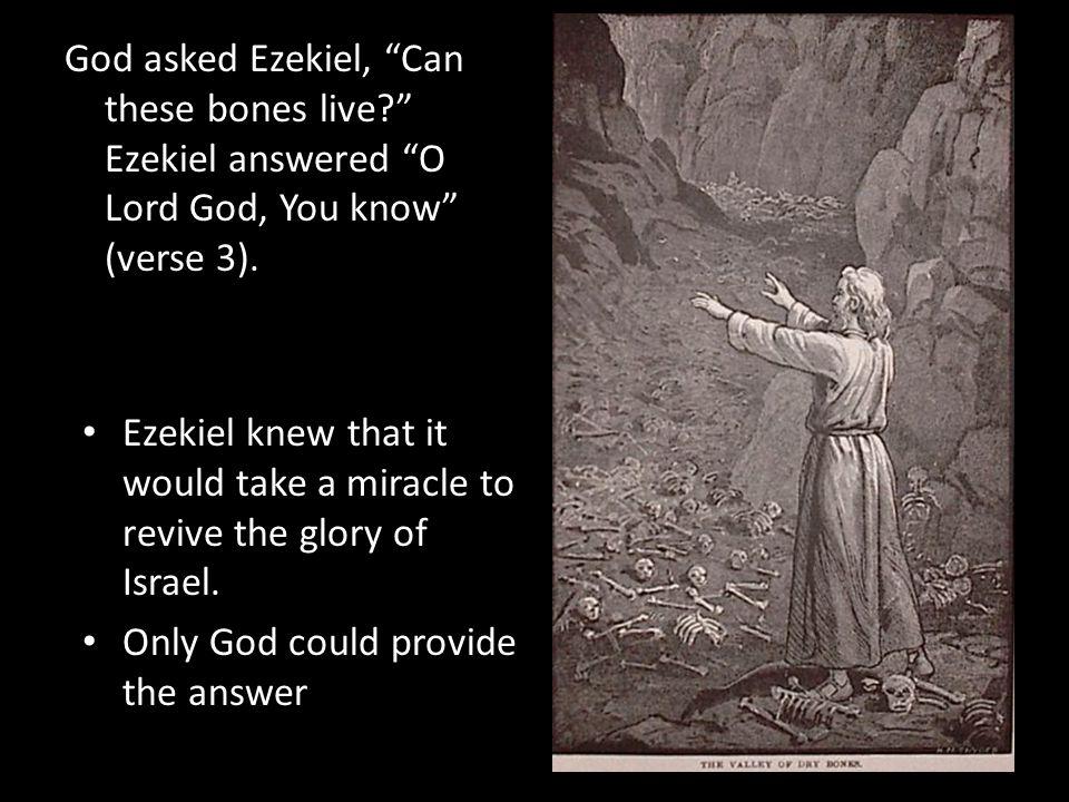 God asked Ezekiel, Can these bones live