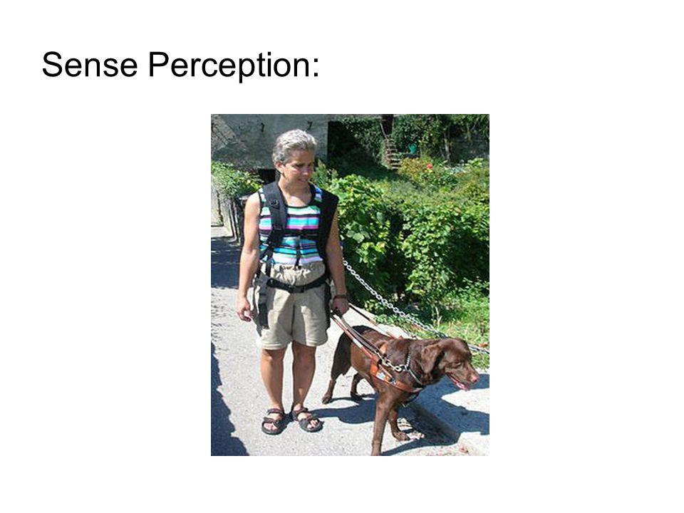 Sense Perception: