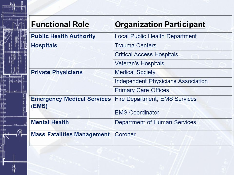 Organization Participant