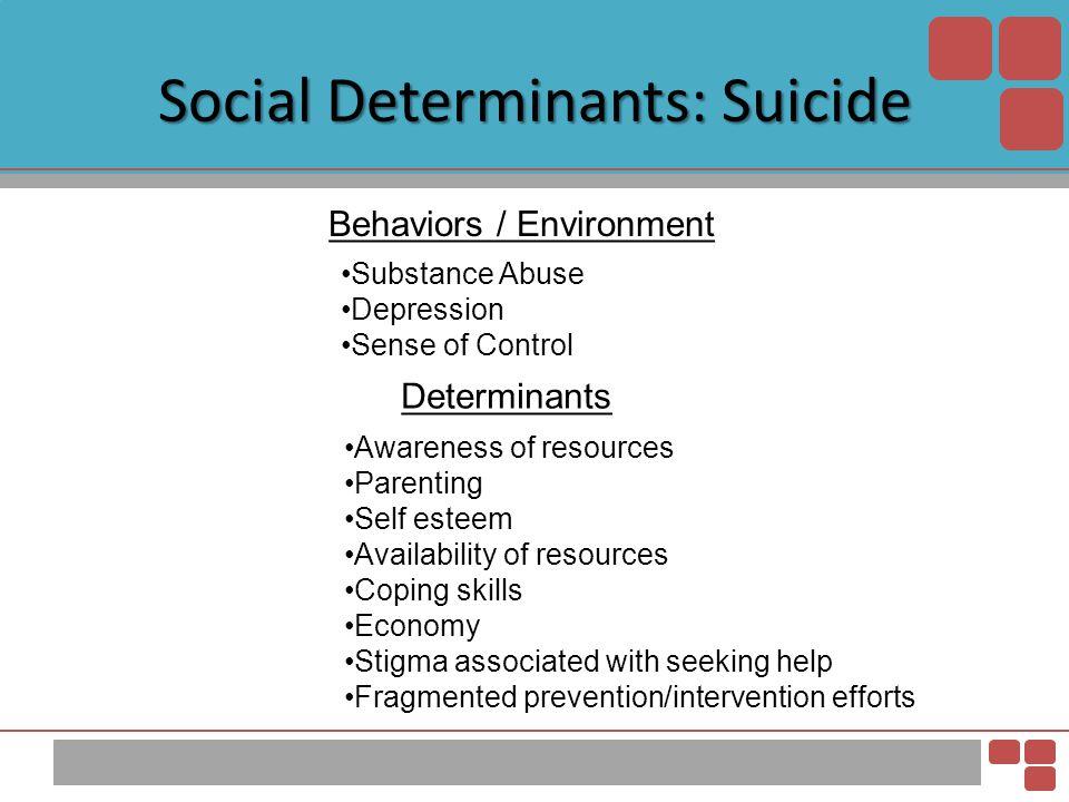 Social Determinants: Suicide