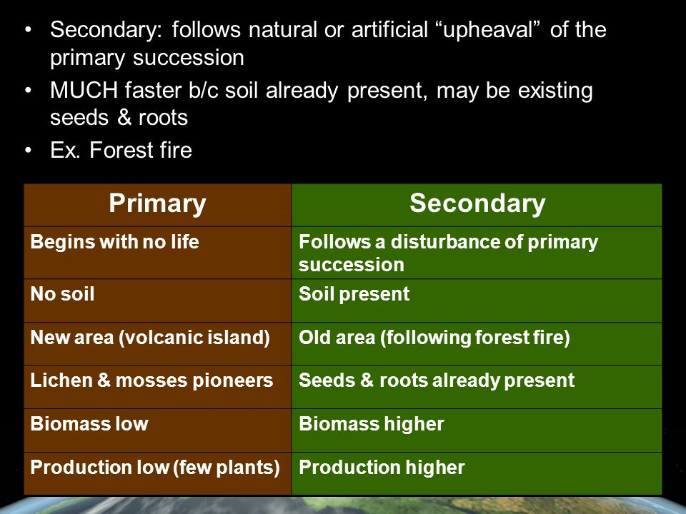 Secondary: follows natural or artificial upheaval of the primary succession