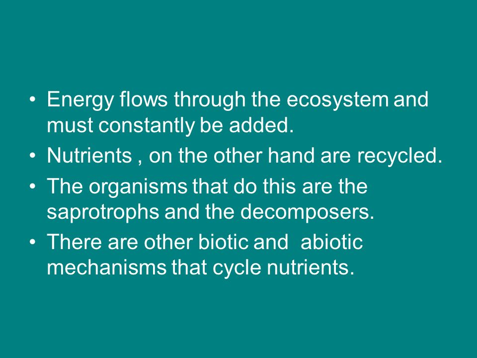 Energy flows through the ecosystem and must constantly be added.