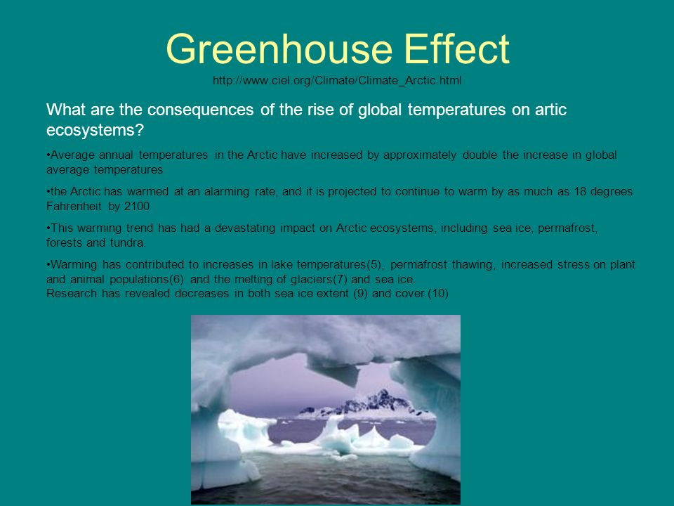 Greenhouse Effect http://www.ciel.org/Climate/Climate_Arctic.html
