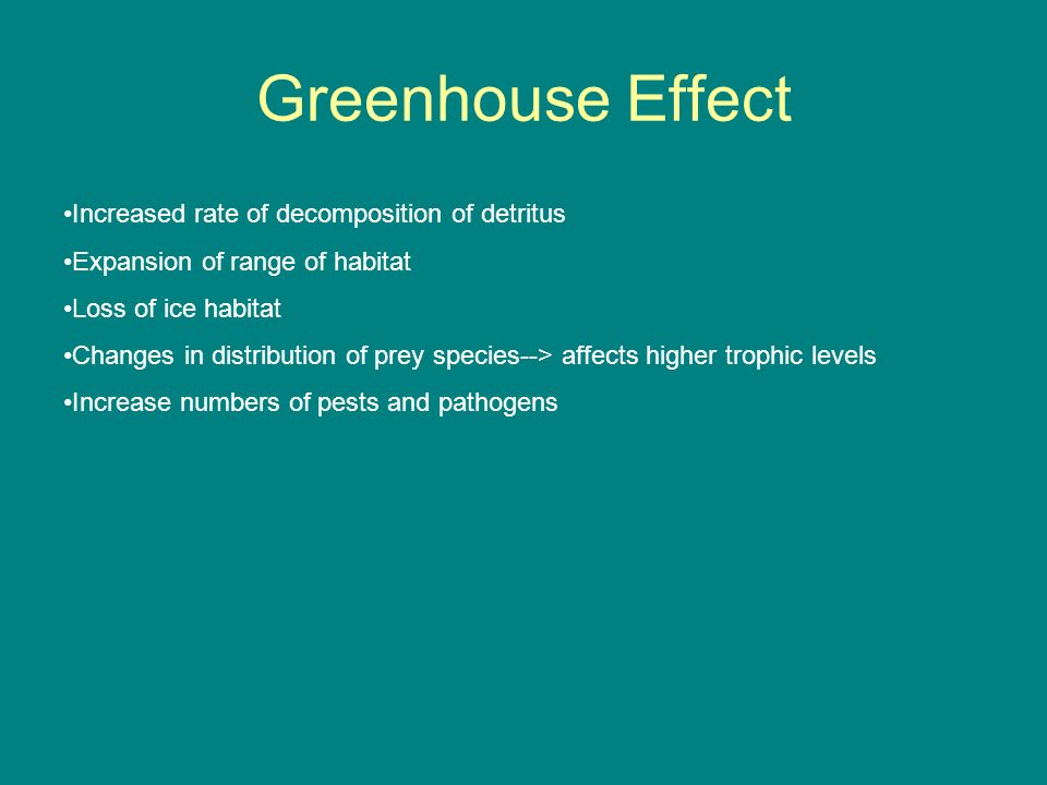 Greenhouse Effect Increased rate of decomposition of detritus