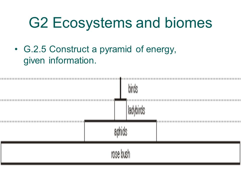 G2 Ecosystems and biomes