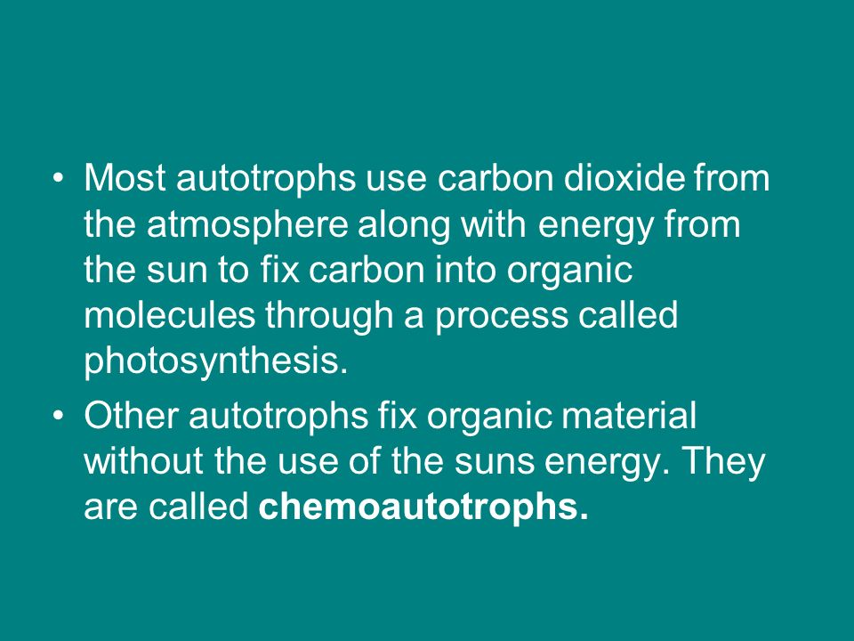 Most autotrophs use carbon dioxide from the atmosphere along with energy from the sun to fix carbon into organic molecules through a process called photosynthesis.